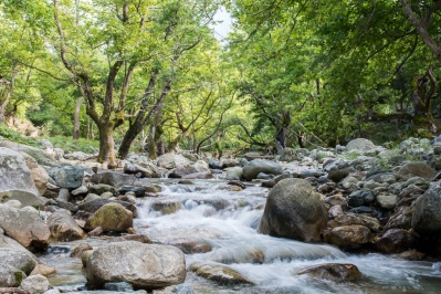 Κοιλάδα και Καταρράκτης του Ποταμού Φονιά