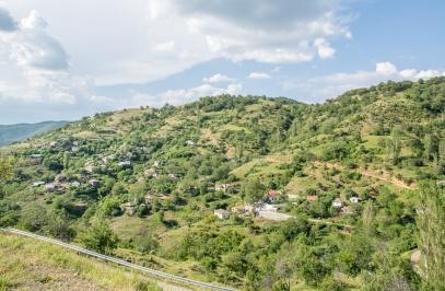Nymphea Settlement