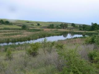 Προστατευόμενη περιοχή Propadnaloto Marsh (Propadnaloto Blato)
