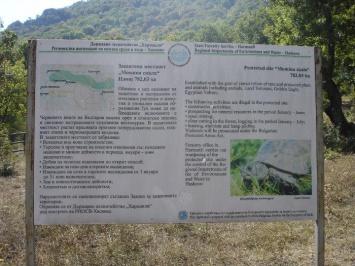 Προστατευόμενη περιοχή Momina Skala