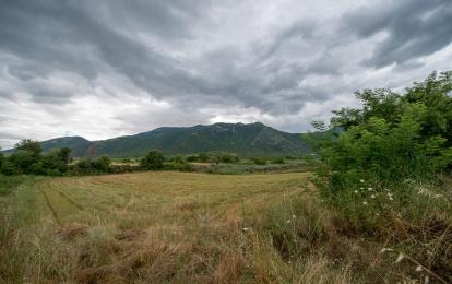 Μενοίκιο Όρος